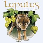 Birra Lupulus Birreria Vecia