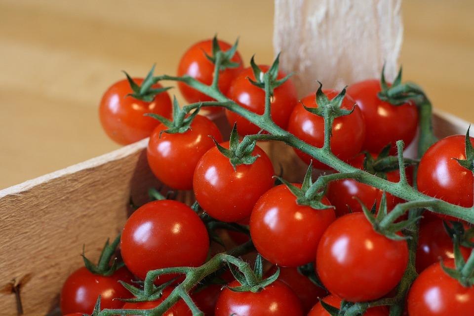 Bruschette estive: i consigli della Birreria Vecia